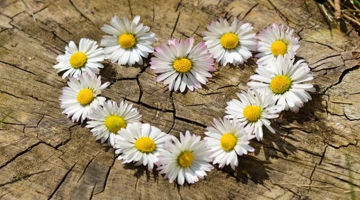 Autentična ljubav i ljubav u palom svijetu